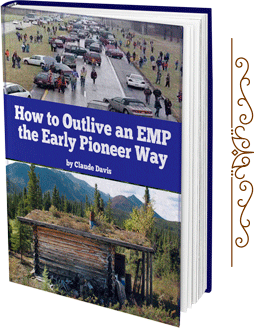 How to Outlive an EMP the Early Pioneer Way - Bonus2